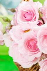 Flower. Beautiful pink roses in wicker basket in a garden