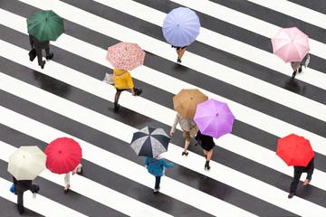Fotomurales - Bunte Regenschirme