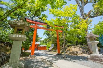shrine entrance, Japanese shrine gate Kyoto, Japan,16 May 2014 Wall mural