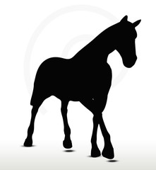 horse silhouette in Parade Walk position