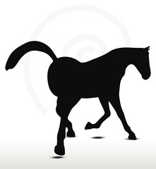 horse silhouette in Looking good position