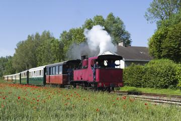 Train touristique en Baie de Somme (80)