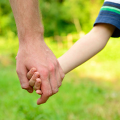 hands, father lead his child in summer garden nature outdoor, tr
