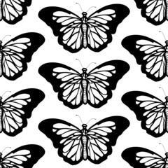 Graphic butterfly black and white seamless pattern