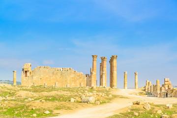 The Temple of Artemis is a Roman temple in Jerash, Jordan.