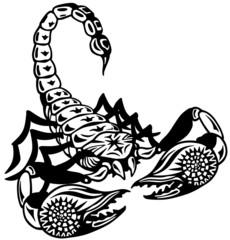 scorpion black white