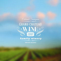 Wine label type design against a vineyards landscape