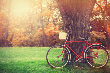 Poster de jardin Velo Vintage bicycle waiting near tree