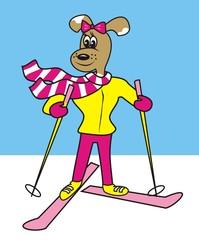 dog and ski