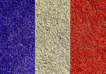 Fototapete - France, the flag on the texture of the grass