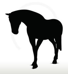 horse silhouette in Walking Head Down position