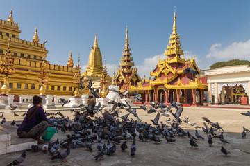 Feeding Bird at Shwezigon Pagoda . ,  Bagan in Myanmar (Burmar)