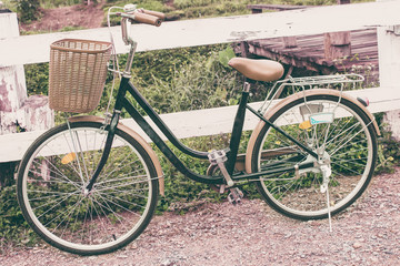 Vintage Bicycle in garden and fence wood