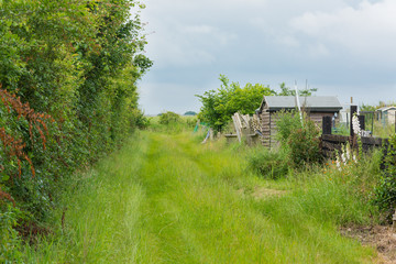 Grass covered lane with garden sheds