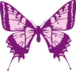 Butterfly Vector Clipart Design Illustration