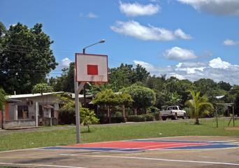 tropical basket