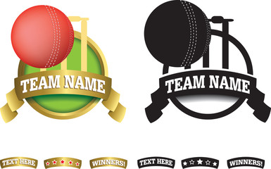 Badge, symbol or icon on white for cricket