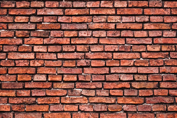 Fototapeta Stary mur z cegły