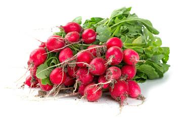 fresh radish isolated on white