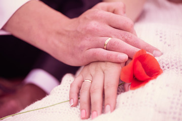 wedding couple hands with rings and wild poppy flower
