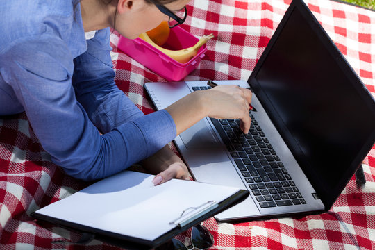 Young businesswoman working on laptop during picnic