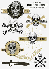 Vector Pirate Skull and Bones Set