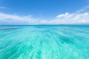 Wall Murals Green coral Crystal clear blue tropical water, Okinawa, Japan