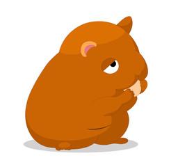 Illustration of cute hamster