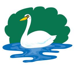 Illustration of cute swan