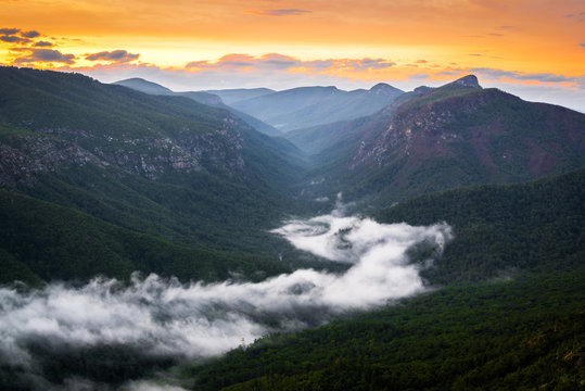 River of Fog at Linville