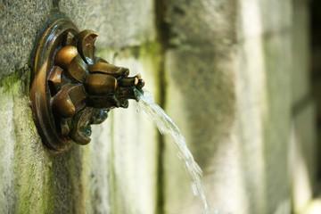 Water fountain in garden