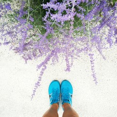 sport blue shoes next to lavender flowers