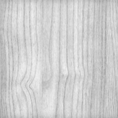 Wood pine plank - white texture background