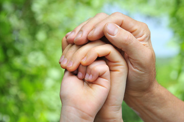 father's hand holds a palm of his wife and daughter