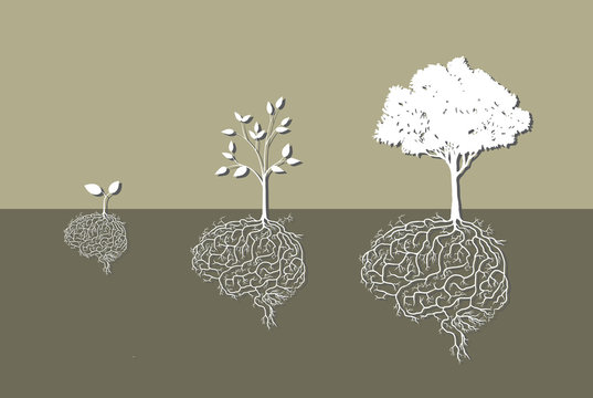 tree with brain root, vector
