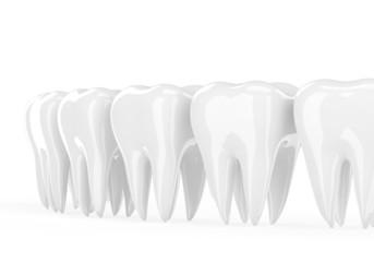 teeth on white