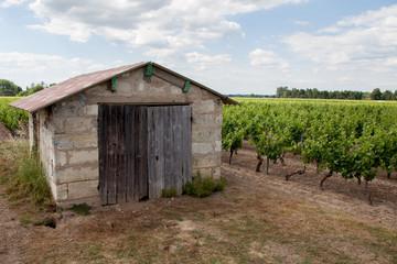 Wall Mural - cabane du vin