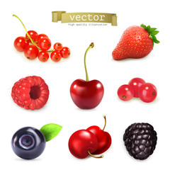 Sweet berries, vector illustration set of high quality