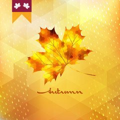 Autumn pattern with leaf. EPS 10