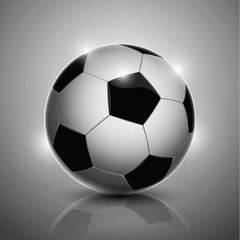 Soccer ball isolated on background