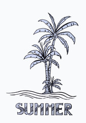 a palm tree in summer background