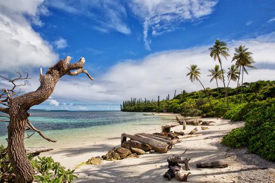 A beautiful sandy beach on Isle of Pines, New Caledonia