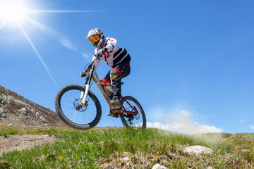 Fototapete - rider