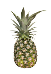 Fersh pineapple on with background