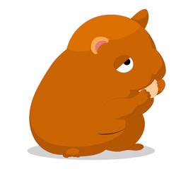 Cute baby hamster cartoon