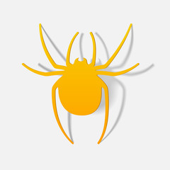 realistic design element: spider