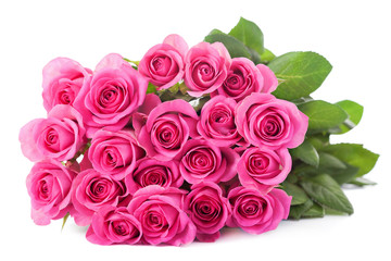 beautiful pink roses bouquet isolated