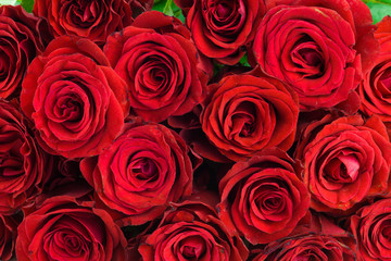 bouquet of red roses as a background