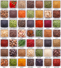 Fototapete - large collection of different spices and herbs