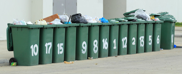 Row of large green bins
